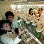 BIENERGY se apoya en la ciencia para crear una buena alternativa a Cialis